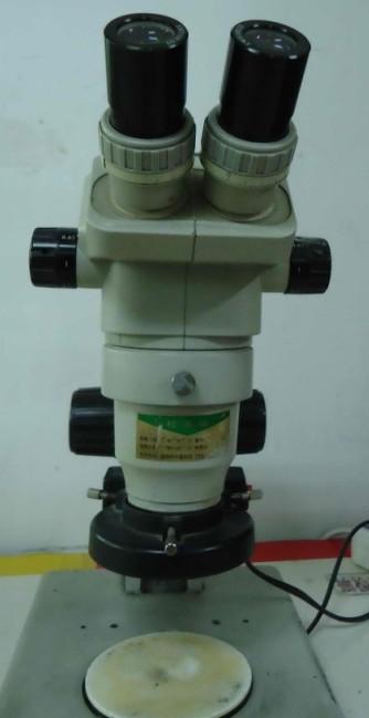 外观显微镜